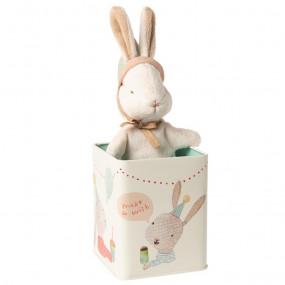 Maileg Bunny na Caixa