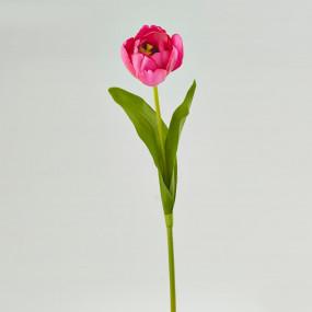 Tulipa Rosa 43cm