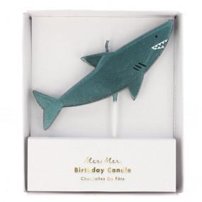 Vela Tubarão
