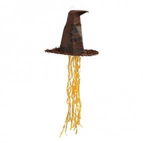 Pinhata Chapéu Harry Potter 3D